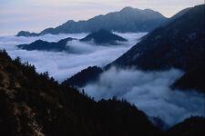 736023 Niebla llenando los barrancos de Los Angeles Bosque Nacional California Usa A4