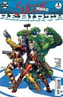 Suicide Squad Comic 1 Rebirth Cover B Variant Amanda Conner 2016 Rob Williams DC