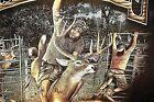 Redneck Sportsman Redneck Rodeo 8 Seconds On An 8 Pointer Medium Brown T-Shirt
