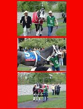 3 Rockport Harbor Horse Race 8x10 Photos Coolmore Lexington Stakes Keeneland #3