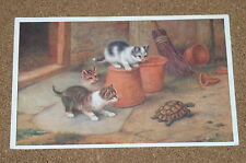 Vintage Postcard: Three Kittens and a Tortoise, E Hunt, Salmon, 1953