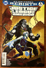 JUSTICE LEAGUE of AMERICA #1 FRIED PIE Mahnke Variant cover - DC Rebirth - NM