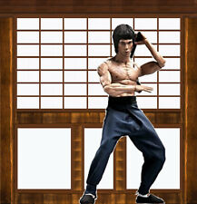 """1/6 Bruce Lee Diorama 15""""x15"""" Detolf - Ideal for 12"""" Hot Toy Side show Custom"""