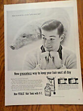 1955 Vitalis Hair Tonic with V-7 Ad How to avoid Dry unruly Polar Bear Hair