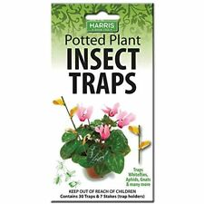 Potted Plant Insect Traps For Gnats Aphids Whiteflies And More 30 Traps 7