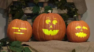 The Singing Pumpkins total collection. Great for Halloween