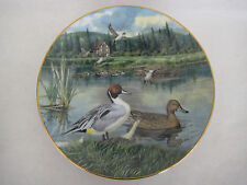 "Collectors Plate ""The Pintail"", By Bart Jerner, Knowles Fine China, 8 1/2"" Dia"