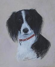 Spaniel Dog Named Jolly a Pastel Painting Susanna Gilmore-Powell 1991 British