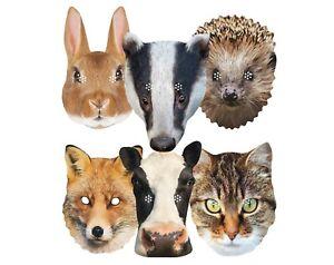Británico Animales Variedad 2D Tarjeta Fiesta Máscaras 6 Pack Incluye Fox, Vaca