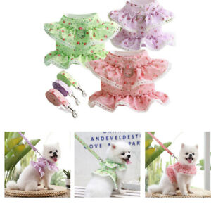 Small Pet Dog Cat Dress Floral Lace Harness and Leash Chest Strap  Harnesses UK