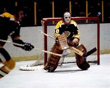 Gerry Cheevers Boston Bruins Auction 8x10 Photo