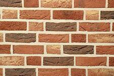 Handform-Verblender WDF BH494 rot bunt Klinker Vormauersteine