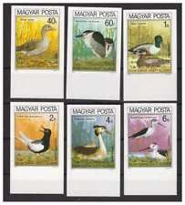 Hungary 1980 - European Birds Imperforated Set MNH