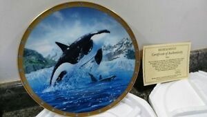 LIMITED EDITION 22CT GOLD  ORCA BY JARRETT HOLDERBY WHALE CONSERVATION PLATE
