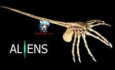 """Sci-Fi Horror Alien Xenomorph Face Hugger With Nails 1/1 Vinyl Model Kit 42"""""""
