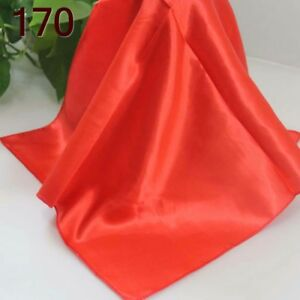 Elegant Designs Silk Satin Feel Ladies Small Square Head Neck Scarf Gift 50cm