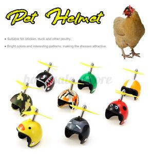 Funny Small Chicken Helmet Hens Bird Hard Protective Hat Headgear Pet  US1 P