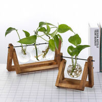 Terrarium Tabletop Flower Pot Wooden Frame Hydroponic Plant Vases Glass Vase