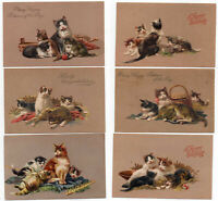 Beautiful~Set of 6 Cats~Kittens~Antique Embossed ~PFB Cat Postcards Lot-g355