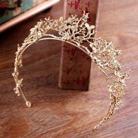 GC- Baroque Branch Bridal Crown Rhinestone Tiara Dragonfly Hair Accessory Splend