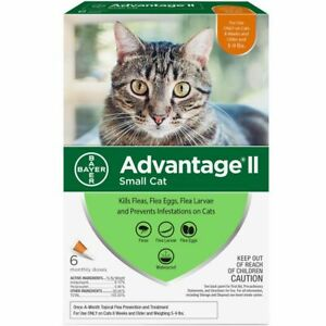 Bayer Advantage II For Small Cats 5-9 lbs - 6 Pack - Free Shipping