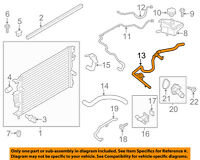 FORD OEM 13-16 Escape 1.6L-L4 Radiator-Overflow Hose GV6Z8B081K