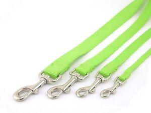 HAMILTON ST Nylon Dog Leads, Lime Green, Various Sizes