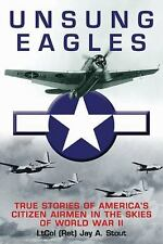 Unsung Eagles: True Stories of America's Citizen Airmen in the Skies of World Wa