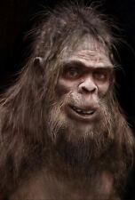 Framed Print - Bigfoot Sasquatch Creature (Picture Poster Monkey Monster Art)