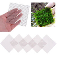 10Pcs Aquarium Fish Tank Plastic Wire Mesh Pad Plants Moss Net Acces 5x5cm