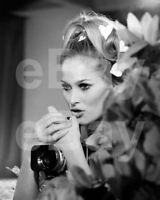 Casino Royale (1967) Ursula Andress 10x8 Photo