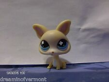 Littlest Pet Shop White Chihuahua with Blue Eyes #837
