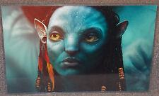 Avatar Neytiri Glossy Print 11 x 17 In Hard Plastic Sleeve