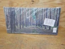 Forest Road in Thick Woods Modern Forest Canvas Art
