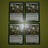 Everbark Shaman x4 Morningtide 4x Playset Magic the Gathering MTG