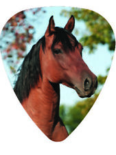 Horse Guitar Pick Pack Equine Mare Stallion Racehorse Pony Medium Picks