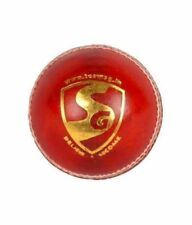 SG Test leather ball ( Pack of 2 ) with exp shipping