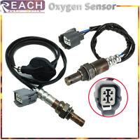 2x Oxygen Sensor O2 for 2010 GMC Terrain Chevrolet Equinox L4-2.4L 234-4242 4251