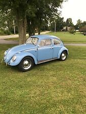 Volkswagen Beetle (Classic) for sale | eBay