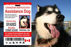 Canadian Service Dog Card, Assistance Dog ID Card,  Service Dog ID Tag