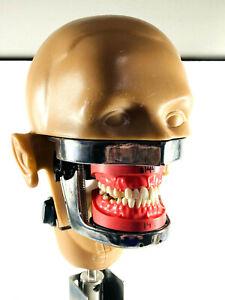 UNUSUAL Kavo Vintage Manikin Dental Phantom nice plastic w/ BASE
