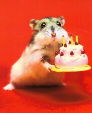 Ansichtskarte: Hamster mit Geburtstagstorte - hamster with birthday cake