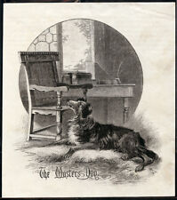 BORDER COLLIE WORKING SHEEPDOG ANTIQUE DOG PRINT ENGRAVING  by J W Whymper