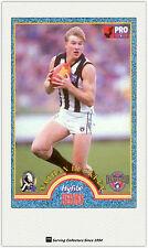 1996 Tip Top Hyfibe AFL Heroes Card #38 Nathan Buckley (Collingwood)