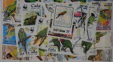 Parrots 25 Stamps (M88)