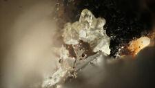 Iodargyrite  - Beauvoir Quarry - France