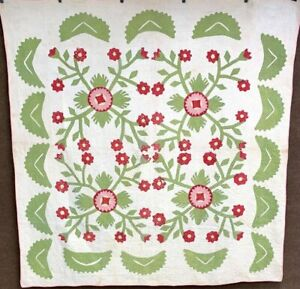 Red Green! 1800s Whig Rose Album APPLIQUE Quilt Antique Maryland