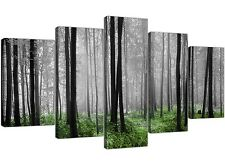Extra Large Green Forest Trees Canvas Pictures 5 Part Black and White