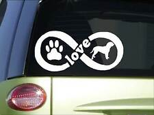 Dogue de Bordeaux Infinity sticker *H383* 4 x 8.5 inch vinyl dog love decal