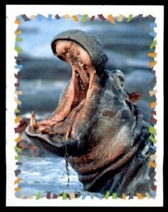 Panini - Disney Animal Sticker 2000 No. 16